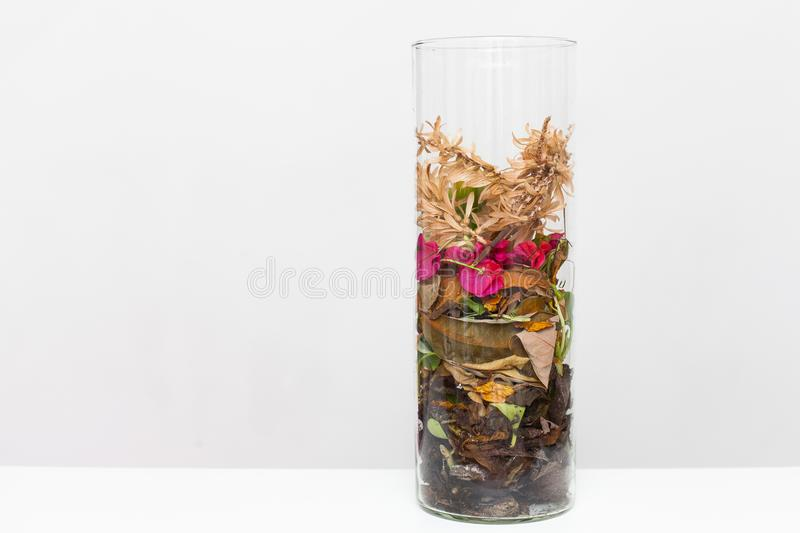 Vase of dead leaves and flowers. Glass vase of dead leaves and flowers on a white background stock photos