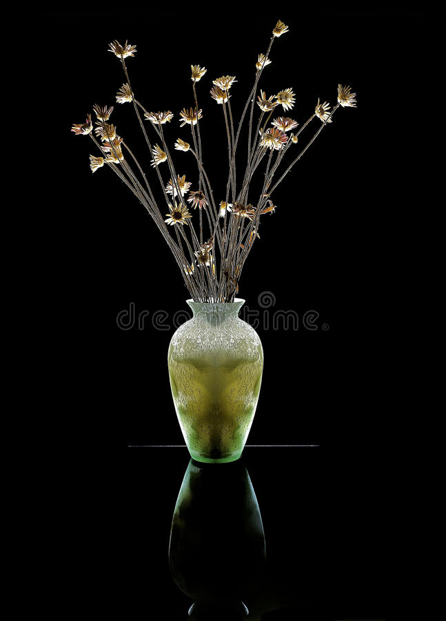 Dry flowers in a vase royalty free stock photos