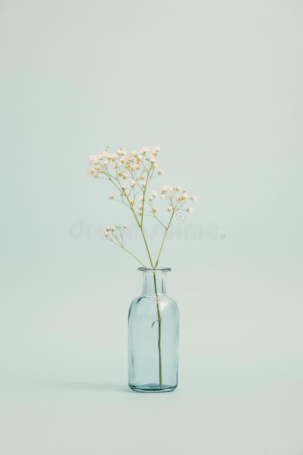 Vase en verre avec un petit bouquet photographie stock