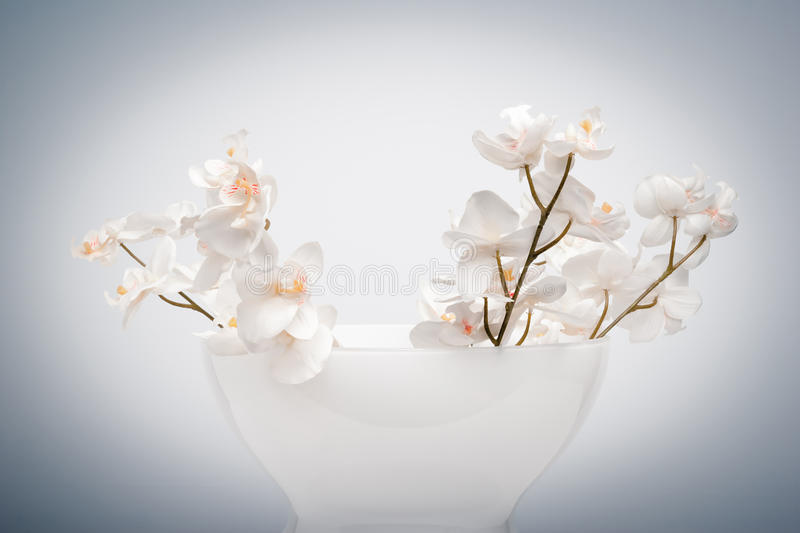 Vase of false flowers. Vase of flowers fintisu clear background stock image