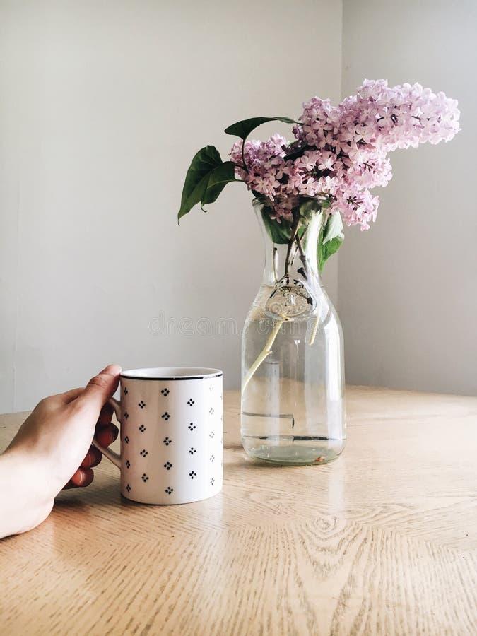 Vase, Flowerpot, Flower, Still Life Photography stock image