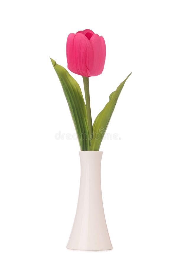 Vase mit bunten Tulpen auf Weiß stockbilder