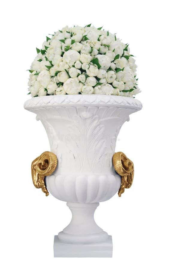 Vase mit den Rosen getrennt auf weißem Hintergrund stockfoto