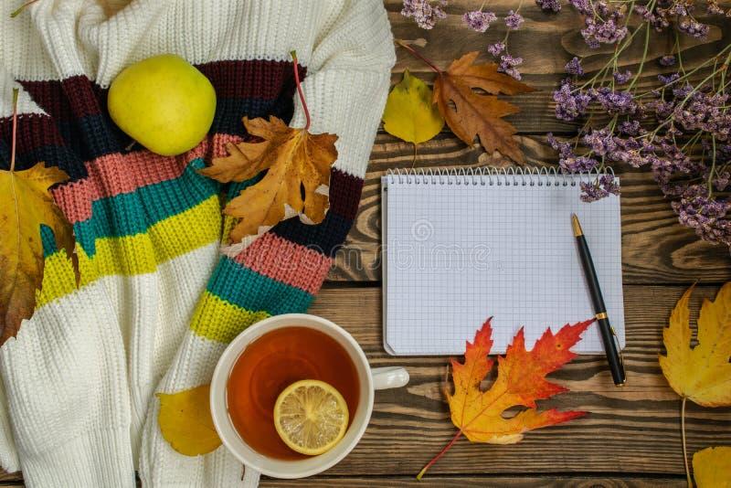 Vase mit trockenen Blättern, Apfel und Kerzen auf dem Rausschmiß Tasse Tee, Apfel, getrockneter Herbstlaub, beige Strickjacke auf stockbild