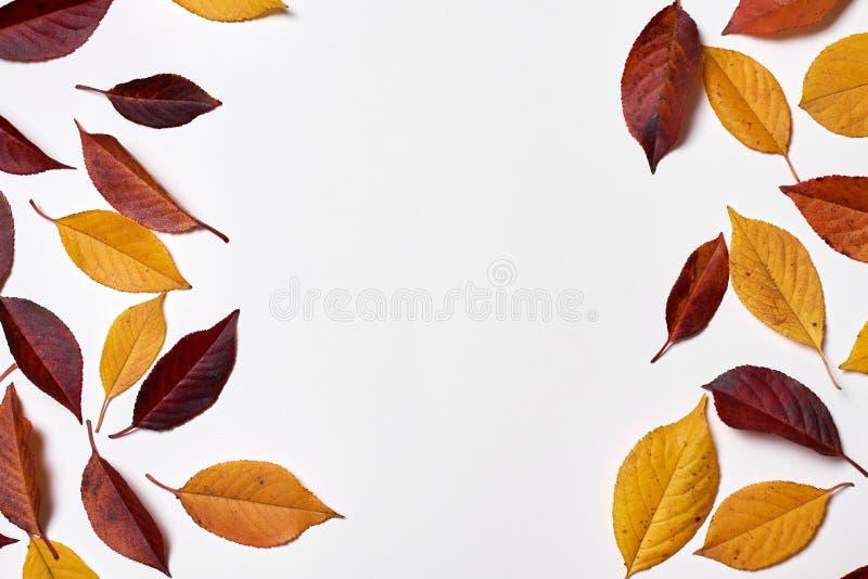 Vase mit trockenen Bl?ttern, Apfel und Kerzen auf dem Rausschmi? Feld gemacht von den gelben und roten Blättern auf weißem Hinter stockbilder