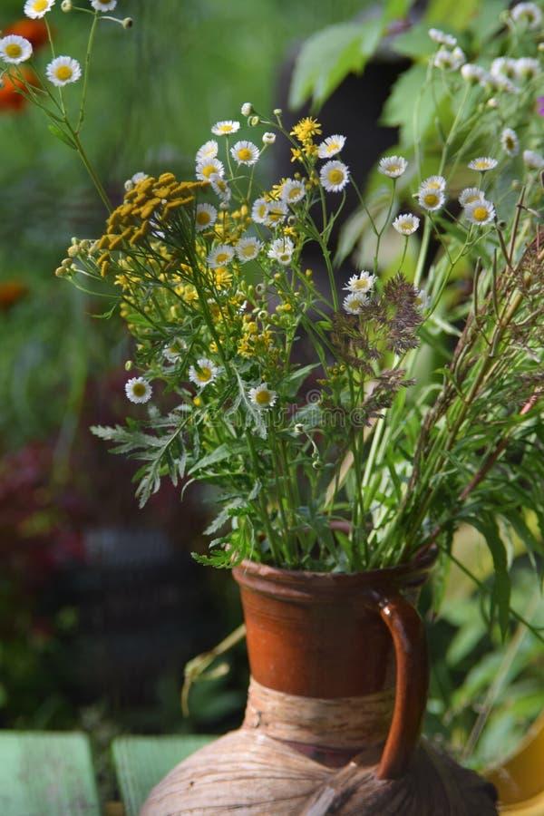 Vase mit Wildflowers stockbilder