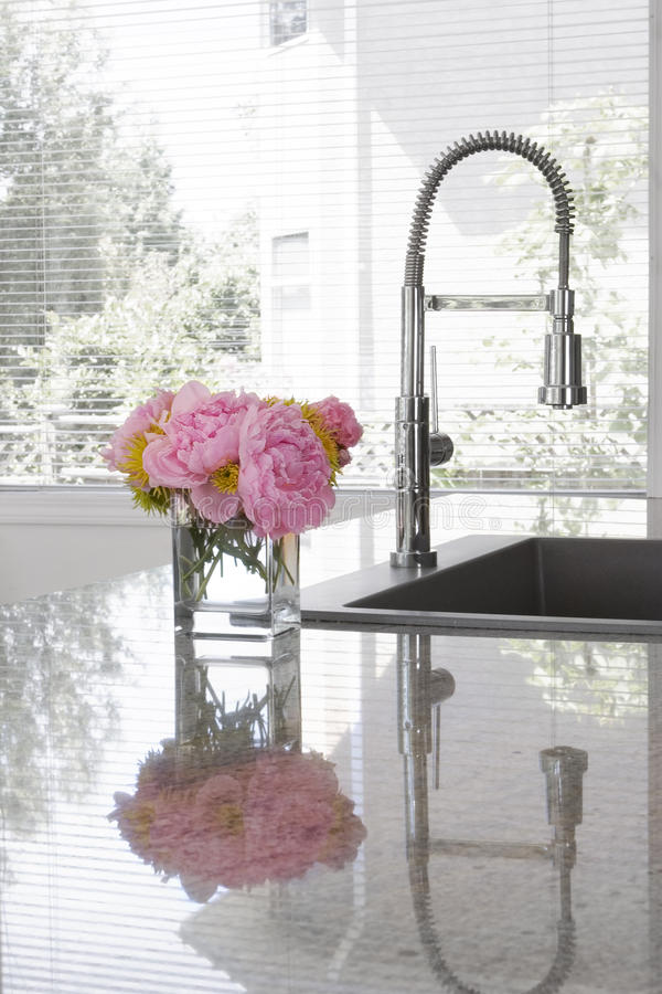 Free Vase Of Peonies On Sink Of Modern Kitchen Stock Images - 10208584