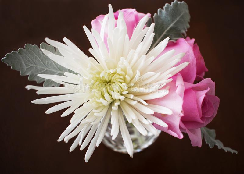 Vase with one white chrysanthemum and pink roses stock photography