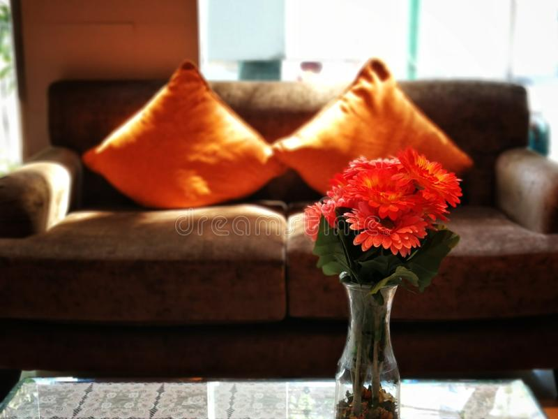 Vase of Orange Daisies in Livingroom. Fresh orange gerbera daisies in a vase sit on a coffee table in a living area stock photography