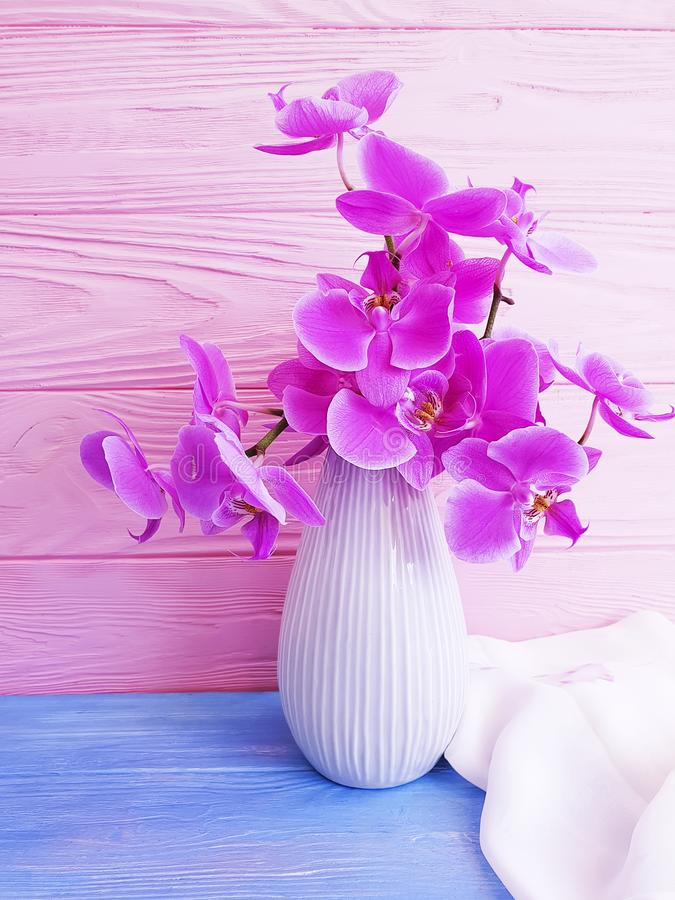 Vase orchid flower on wooden background royalty free stock photos