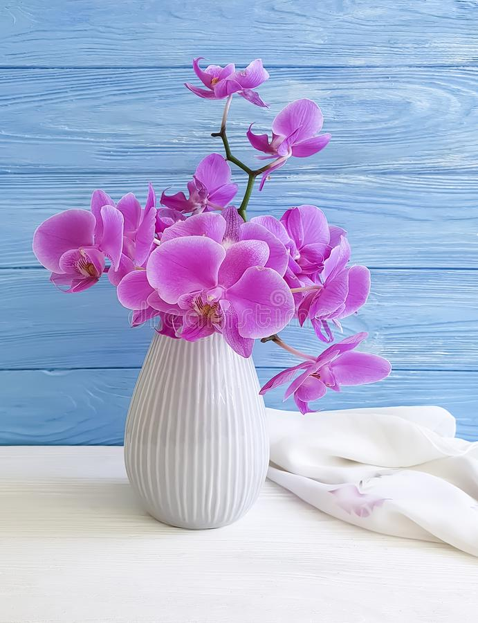 Vase orchid flower on wooden background congratulation, blue, fresh, spring royalty free stock photos