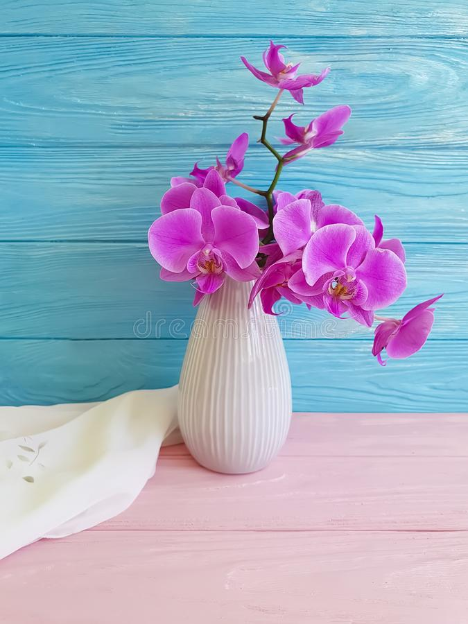 Vase orchid flower on wooden floristic decor design elegance congratulation, blue, fresh, spring royalty free stock photo