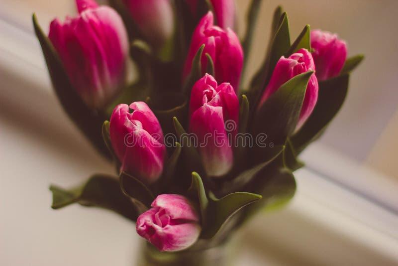 Vase Of Pink Tulips Free Public Domain Cc0 Image