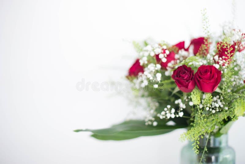 Vase rote Rosen der Blumen auf weißem Hintergrund danken Ihnen und Liebeskartendesignraum für Text lizenzfreie stockfotos