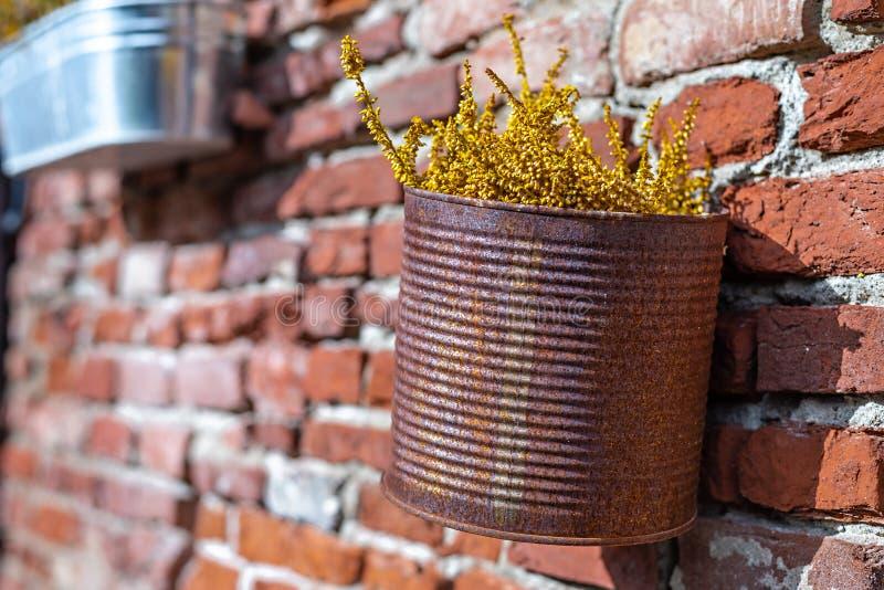 Vase rouillé avec des fleurs accrochant sur un mur photographie stock libre de droits