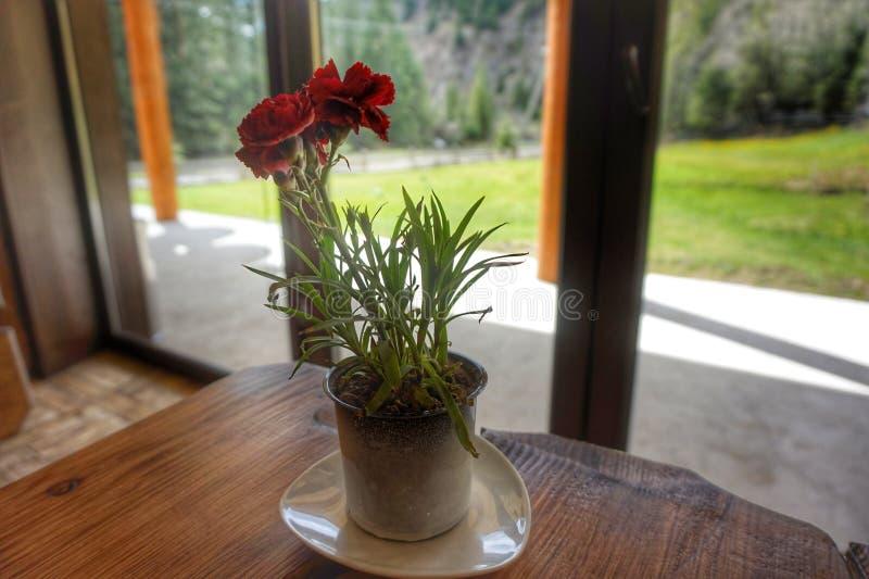 Vase sur la table avec des oeillets ? l'arri?re-plan est une fen?tre donnant sur les montagnes photo libre de droits