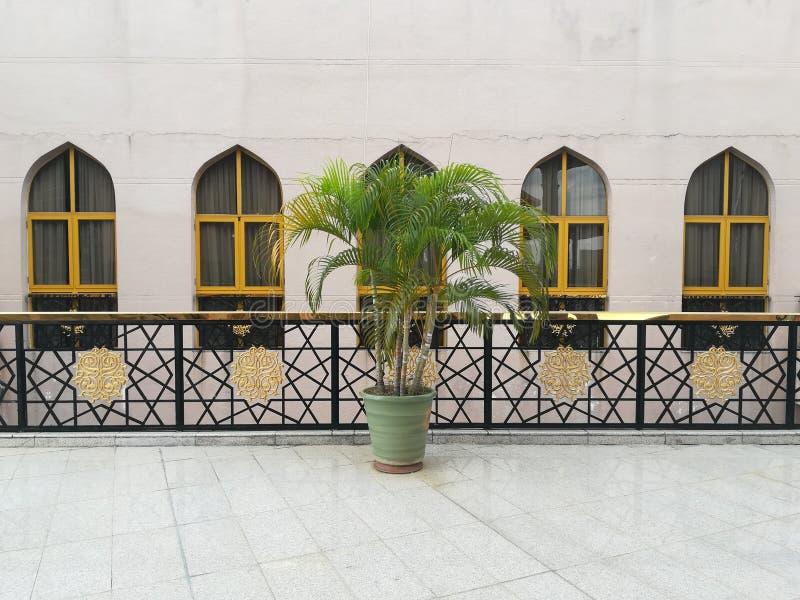 Vase vert au centre de l'image avec la fenêtre classique comme fond photos libres de droits