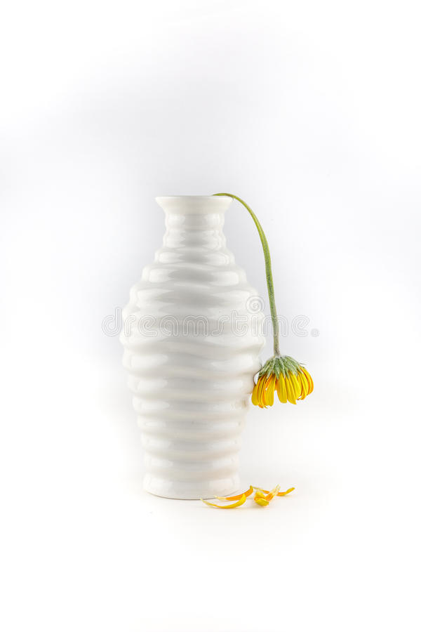 Vase with wilted yellow flower stock photo
