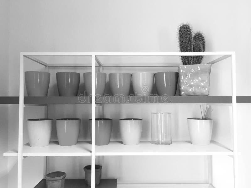 Vasen auf Regalen mit einem saftigen lizenzfreie stockfotografie