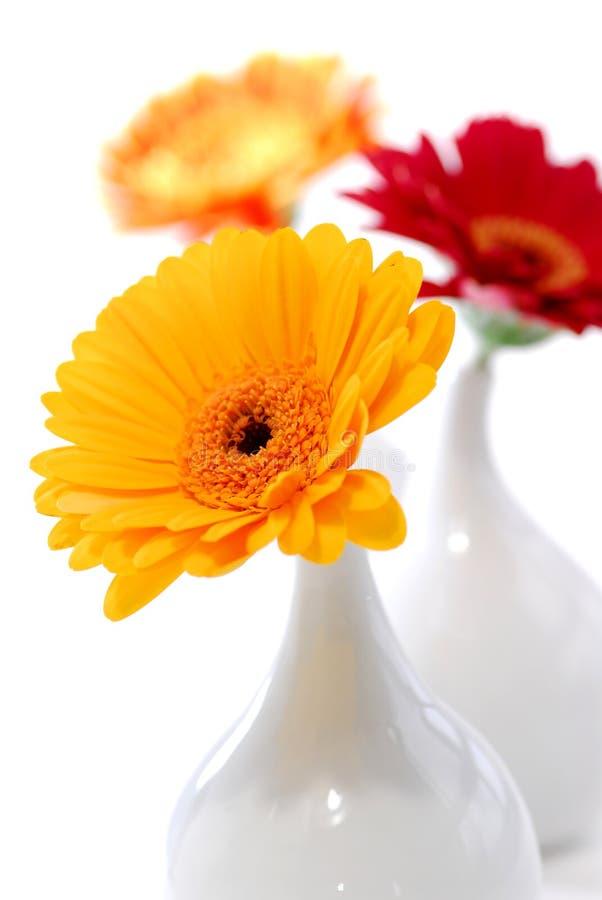 Free Vases Stock Image - 2212031