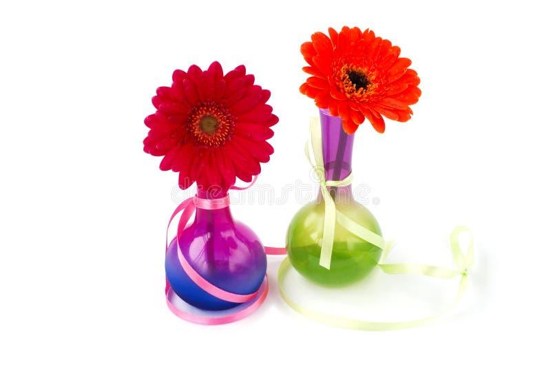 vases gerberas στοκ εικόνα