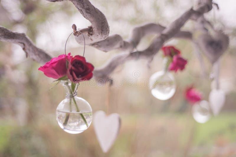 Vases Of Roses In Tree Free Public Domain Cc0 Image