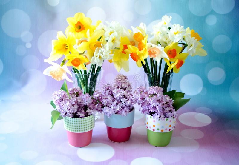 Whimsical Cups Of Spring Flowers With Yellow Daffodils Stock Image