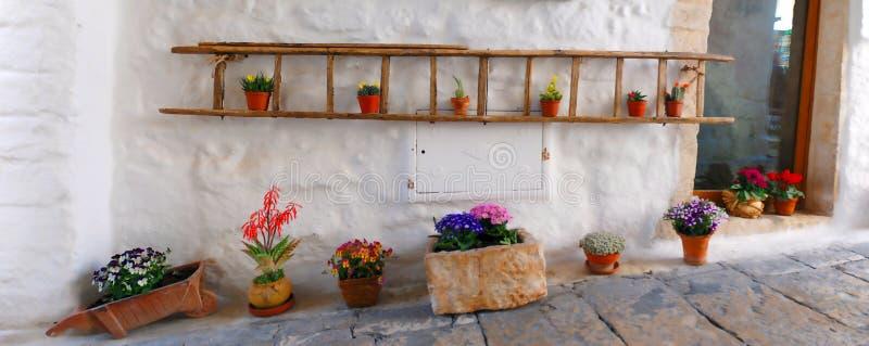 Vasi da fiori che decorano un vicolo nelle vie di vecchia città bianca immagine stock libera da diritti