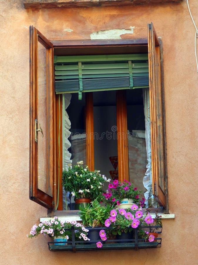 Eccezionale Vasi Da Fiori Sul Davanzale Della Finestra, Venezia, Italia  FB38