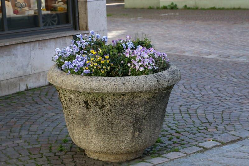 Vasi di fiore della pietra sulle vie della citt? immagini stock