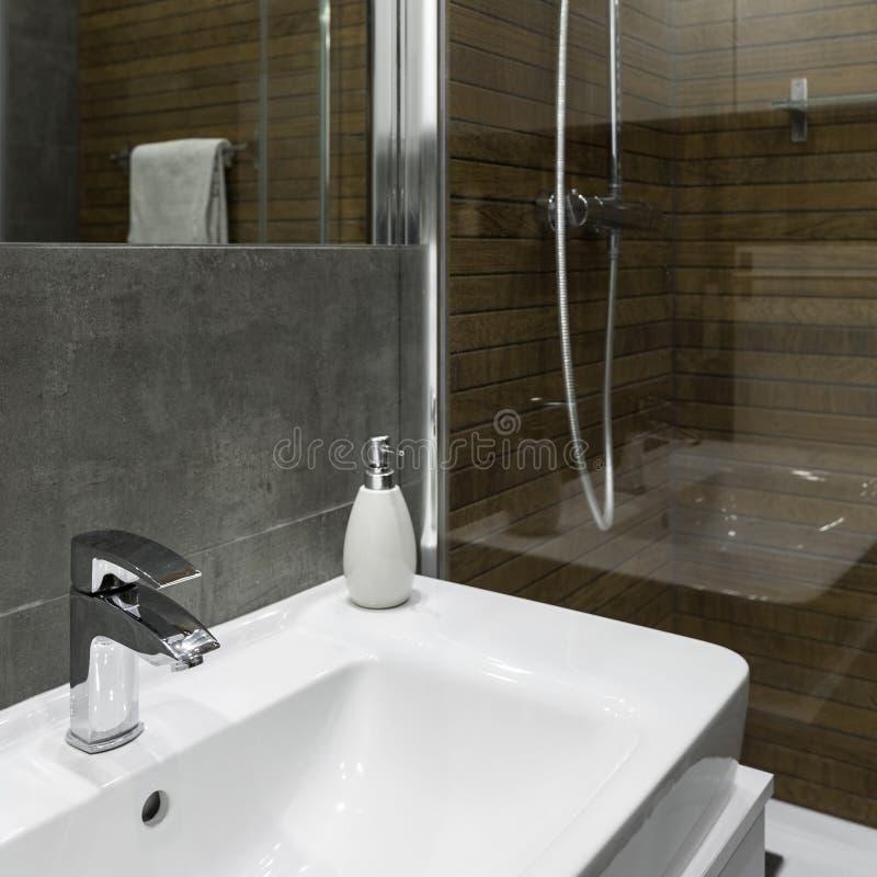 Vask och dusch royaltyfri bild