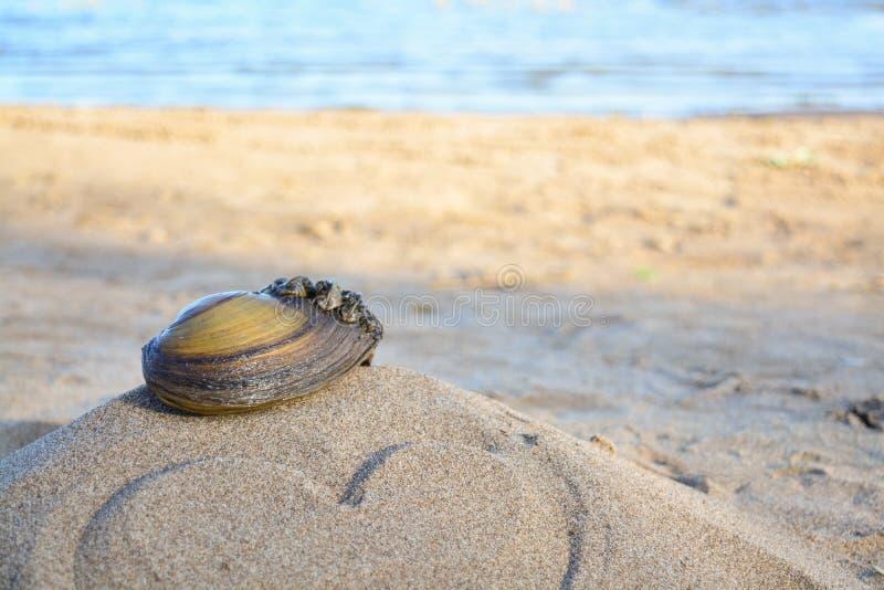 Vask på sand med förälskelse arkivfoton