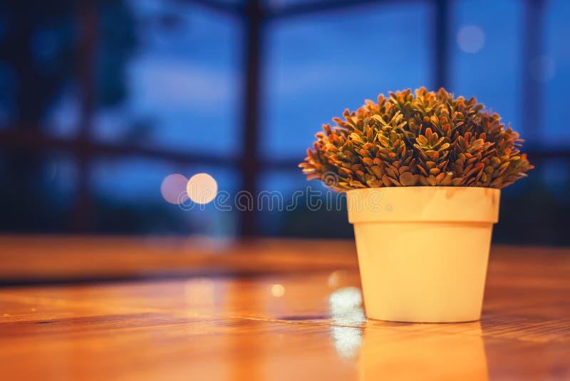 Vaso artificiale della pianta alla notte immagine stock