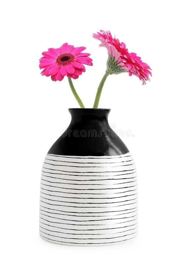 Vaso com flor do gerbera imagem de stock royalty free