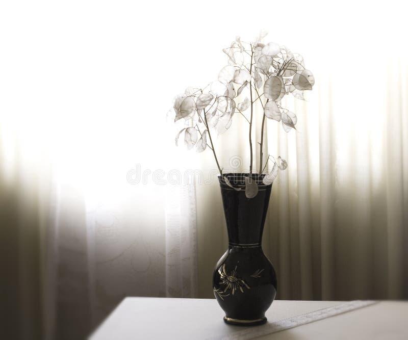Vaso com flores imagens de stock royalty free
