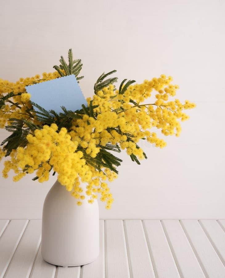 Vaso com flores da mimosa foto de stock imagem de for Mimosa in vaso