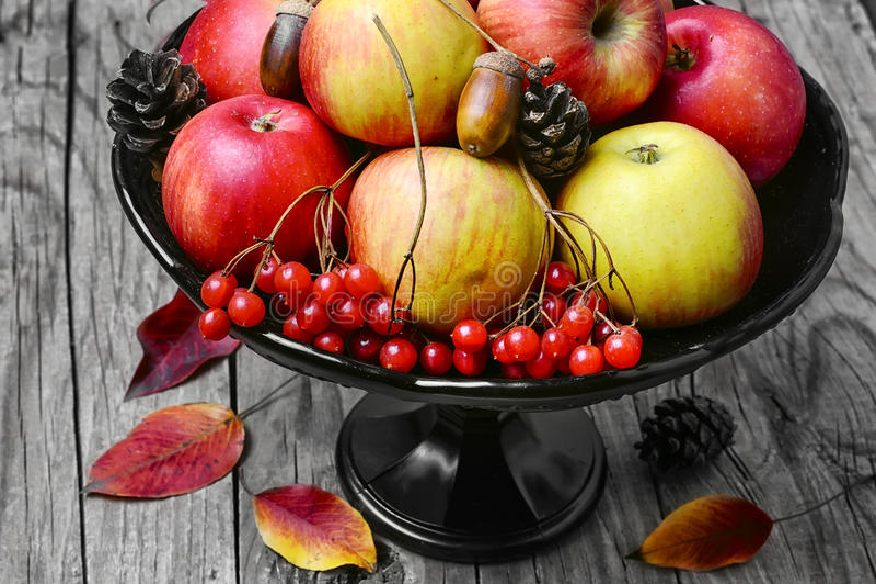 Vaso con le mele e la sorba immagini stock