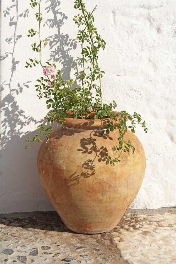 Vaso da fiori spagnolo antico di terracotta fotografia stock