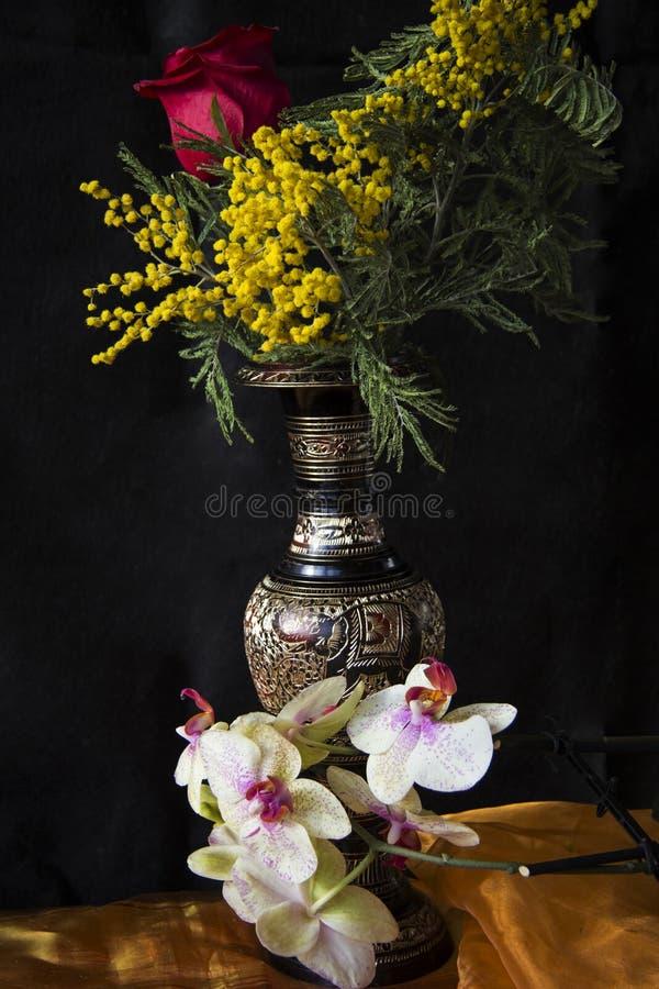 Vaso da mimosa e do indiano imagens de stock