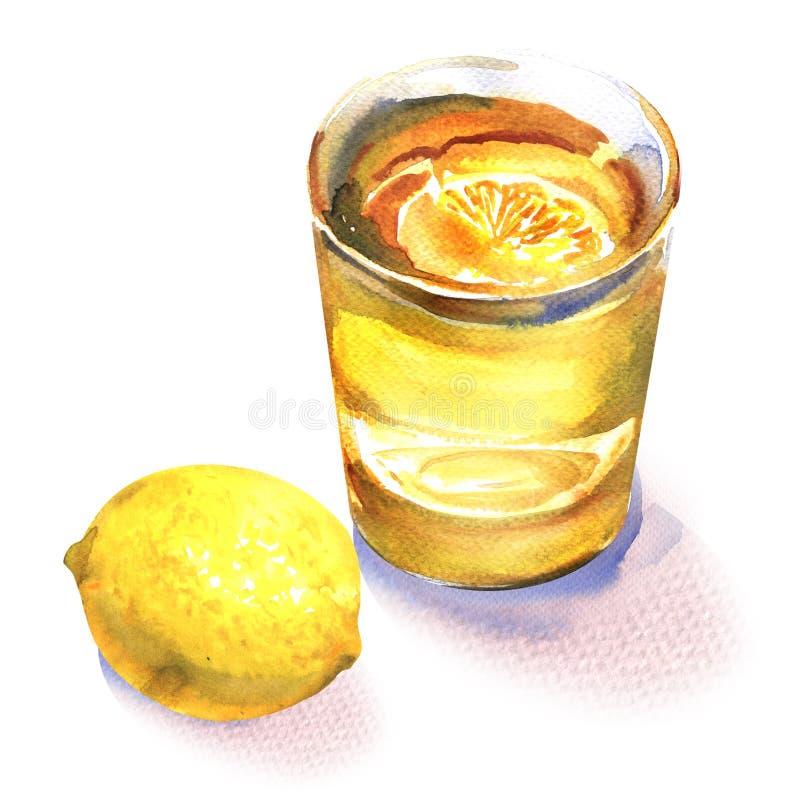 Vaso de agua con la fruta fresca del limón, jugo de limón, fruta cítrica amarilla, bebida, bebida de restauración de la limonada, imagenes de archivo