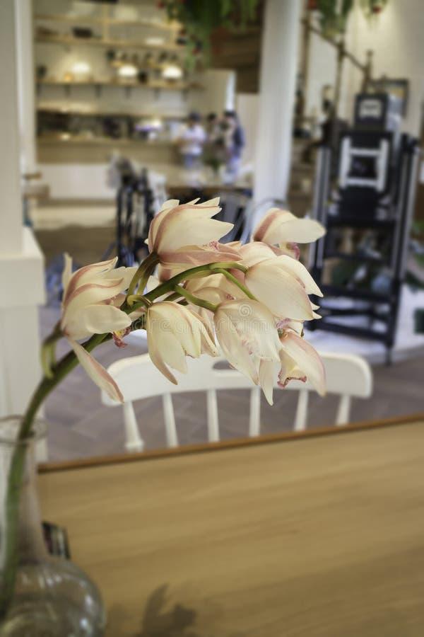 Vaso de flor decorativo da orquídea decorado na tabela de madeira fotos de stock royalty free