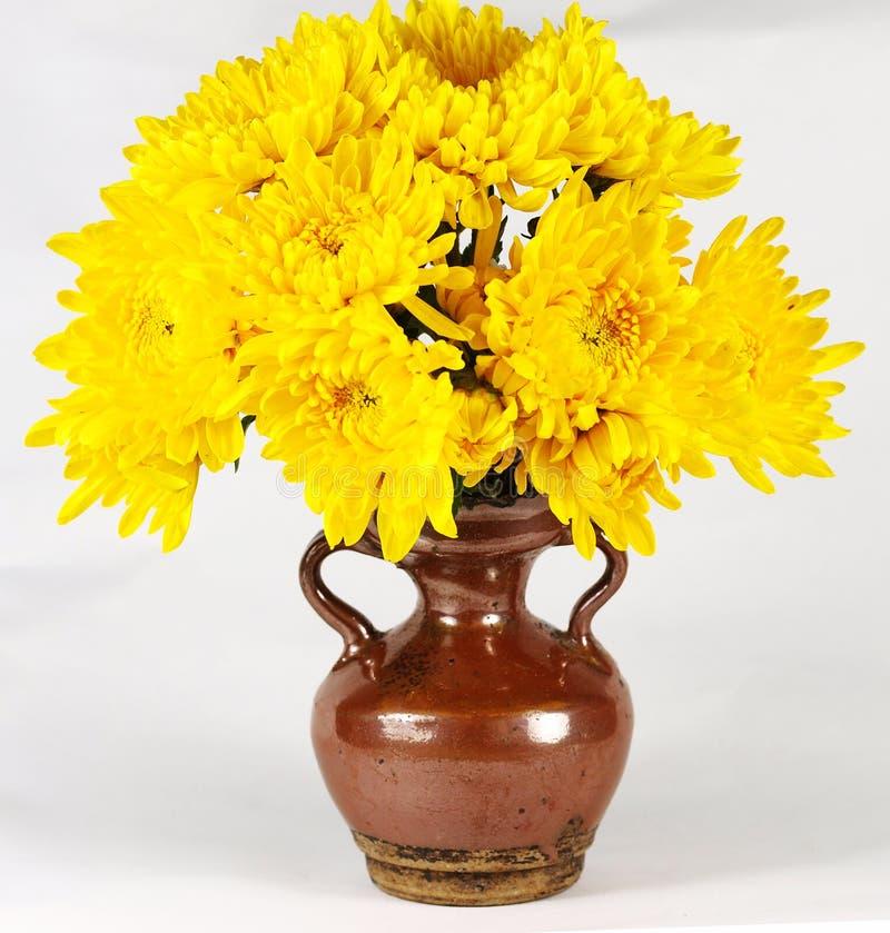 Vaso de flor do crisântemo fotos de stock royalty free