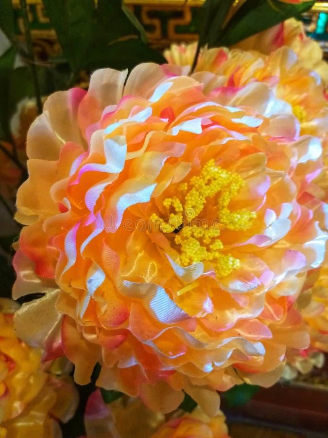 Vaso de flor em Wat Chedi Luang Chiang Mai Tailândia fotografia de stock