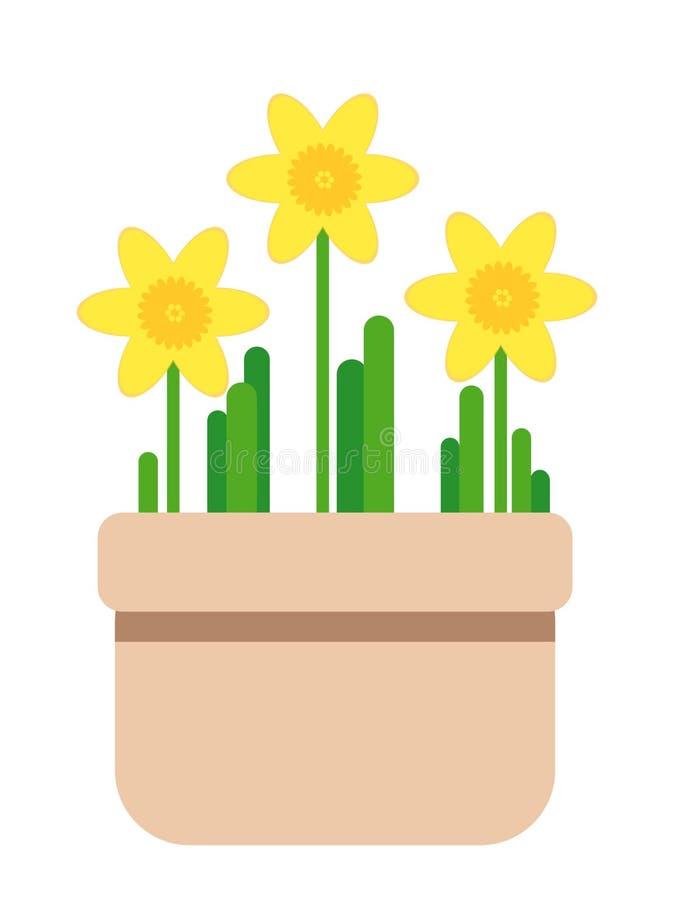 Vaso de flores completamente do narciso florescido ilustração do vetor