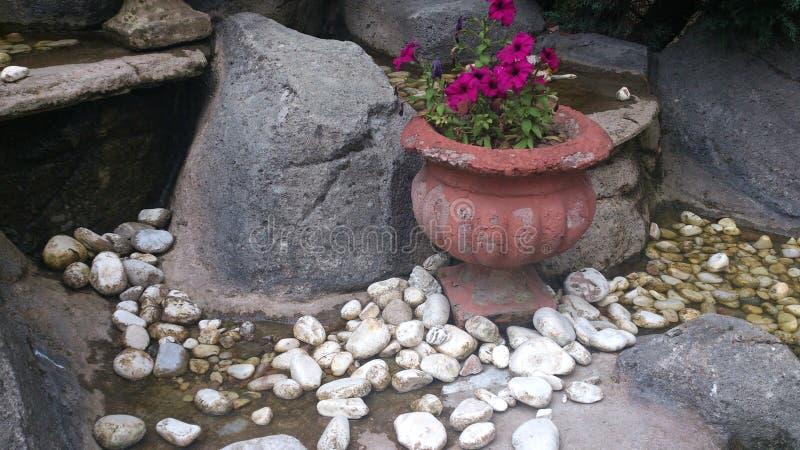 Vaso de pedra do jardim foto de stock royalty free