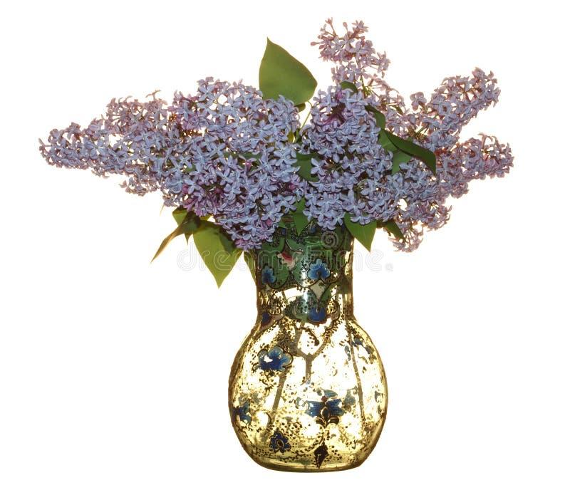 Vaso de vidro velho com um ramalhete do lilás isolado no backgro branco fotos de stock royalty free
