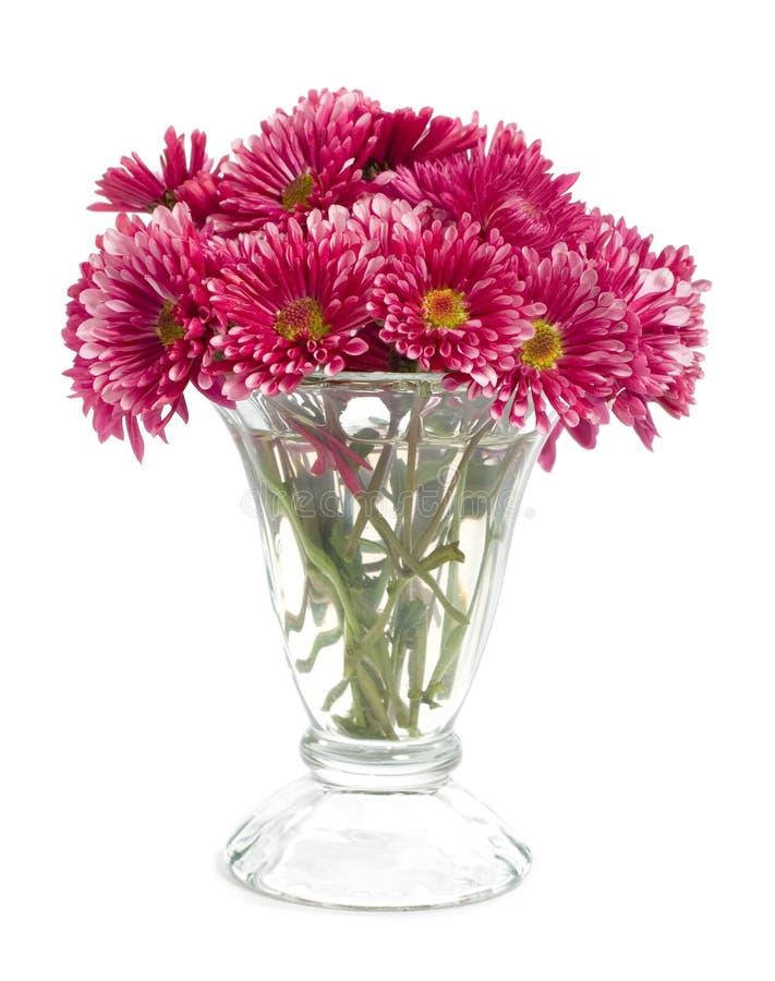 Vaso dei fiori rossi fotografia stock libera da diritti