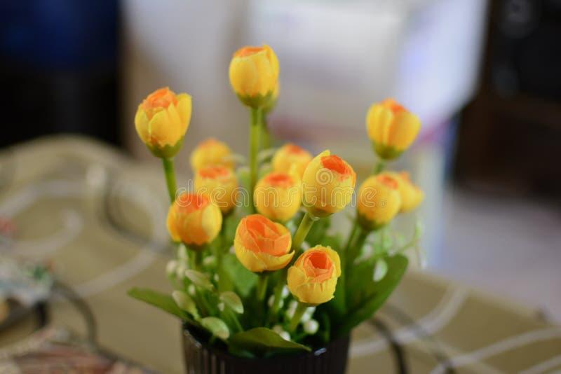 vaso di fiore fotografia stock libera da diritti