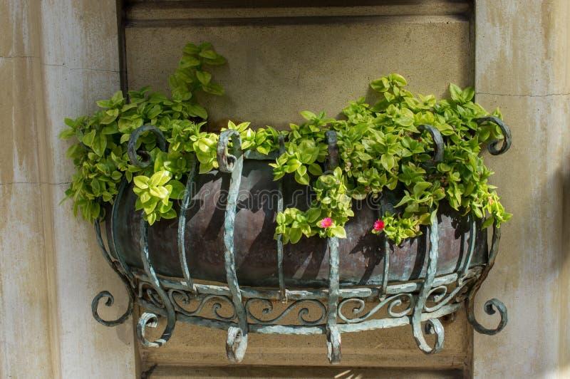 Vaso di fiore con i bei fiori in  fotografie stock