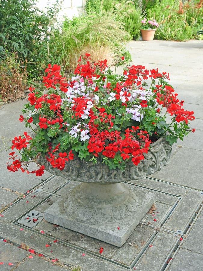 Vaso di pietra decorato dell'ornamento della piantatrice del giardino fotografia stock libera da diritti